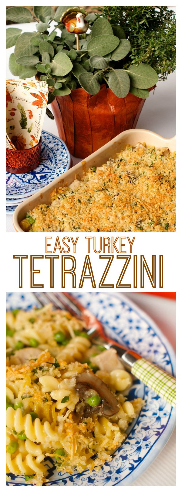 Easy Turkey Tetrazzini with breadcrumb topping, combined with turkey, noodles, peas and mushrooms.