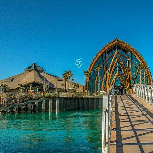 Banana #Island #Doha #Qatar #دوحة #قطر | Banana Island ...