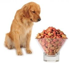 Brand Name Dog Foods Evaluated Based on Content of the Foods--very interesting article (http://holisticandorganixpetshoppe.com)