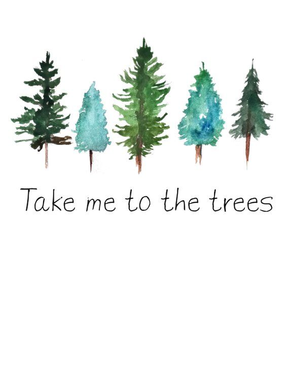Take me to the trees – Watercolor pine trees art print