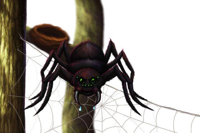 Faerie Island junior novel. The giant spider.