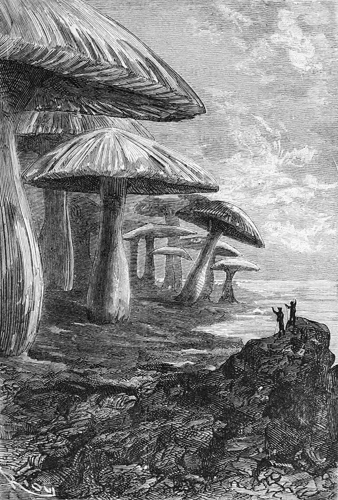 Una ilustración para Viaje al centro de la Tierra de Édouard Riou en 1864. Imagen: DP.