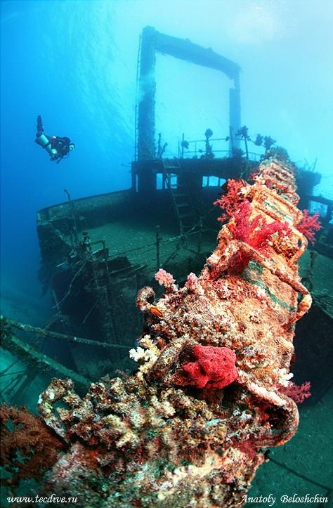 underwater-shipwrecks_TheSocialNewspaper (25)