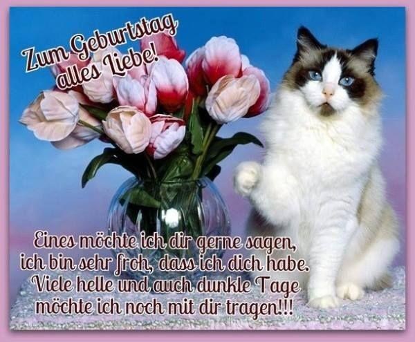 Zum Geburtstag alles Liebe! Eines möchte ich dir gerne sagen, ich bin sehr froh