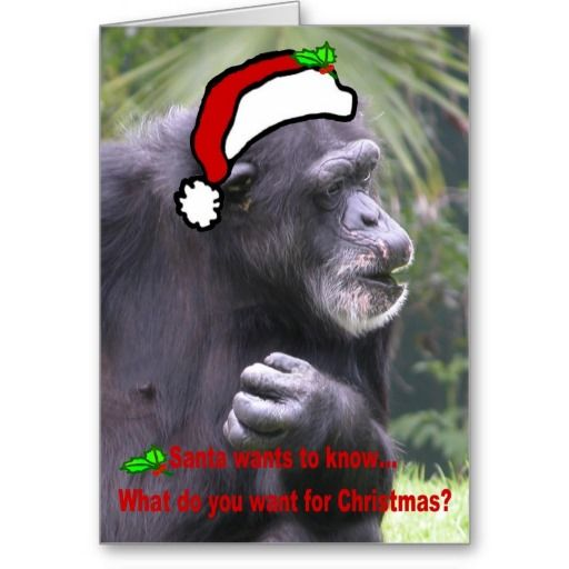 16 Best Single Christmas Cards Images On Pinterest