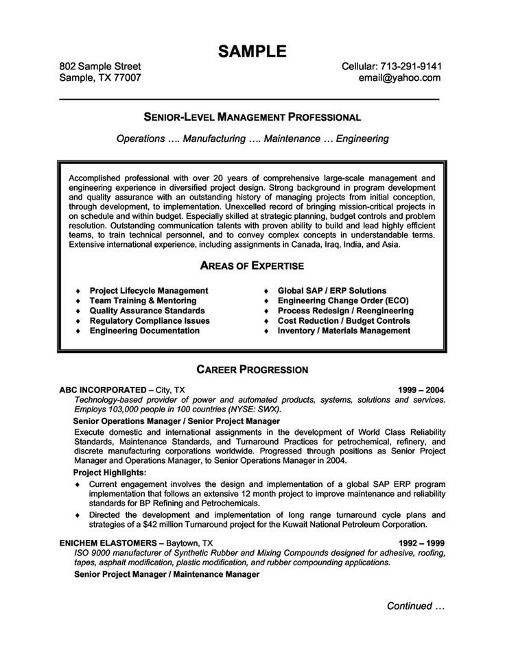 Best 25+ Sample resume templates ideas on Pinterest Sample - examples of professional resumes