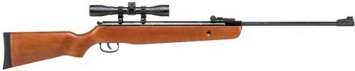 Winchester 1100WS Break-Barrel Air Rifle Winchester http://www.amazon.com/dp/B003WHPCW4/ref=cm_sw_r_pi_dp_.4DEwb1PN646T