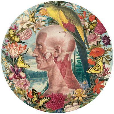 HYPE - Tattoo Brazil: Juan Gatti - Ciencias Naturales