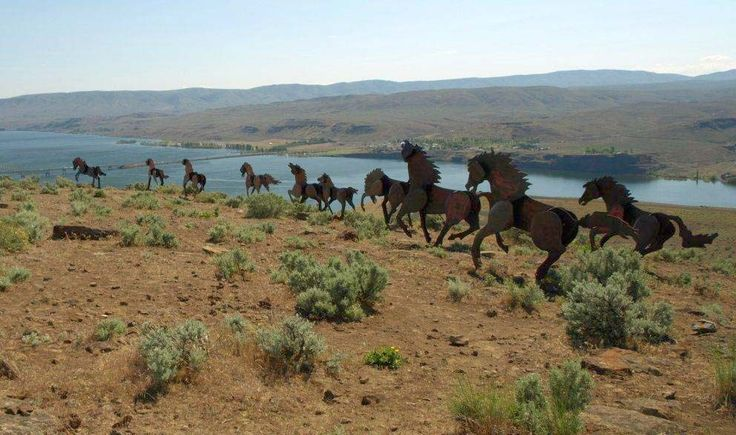 Wild Horses Monument — Washington Trails Association