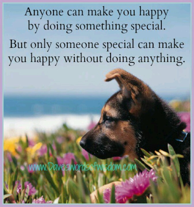 Happy Birthday Dog Quotes ~ Best cards to send images on pinterest