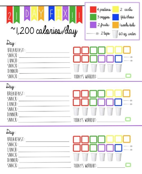 17 Day Diet Log Sheet