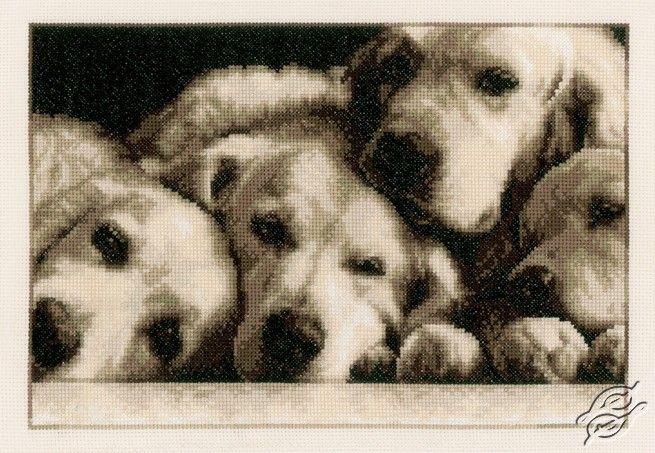 Labradors - Cross Stitch Kits by VERVACO - PN-0154541