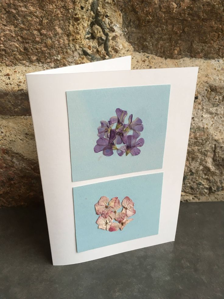 Pressed Hydrangea Card / Little Purple Flower / Flower Bouquetes Card / All occasions Greeting card / Friendship card / - CloeCards by CloeCards on Etsy
