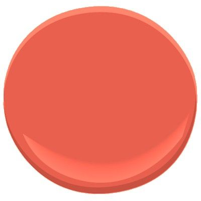 Starburst Orange #coral #orange #paintcolor