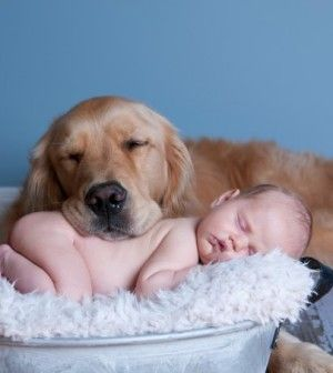 16 Photos of Babies and Dogs That Will Make Your Heart Melt  www.chelseadogs.com/blog