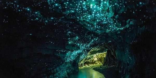 E' stato difficile rientrare dalle vacanze? Noi non vi saremo sicuramente di aiuto! Guardate che posto vi facciamo #scoprire...  Una prossima #meta per le vostre #vacanze??? ;)  http://www.greenme.it/viaggiare/oceania/14186-waitomo-glowworkm-caves-nuova-zelanda