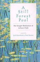 A Still Forest Pool - Insight Meditation Achaan Ch