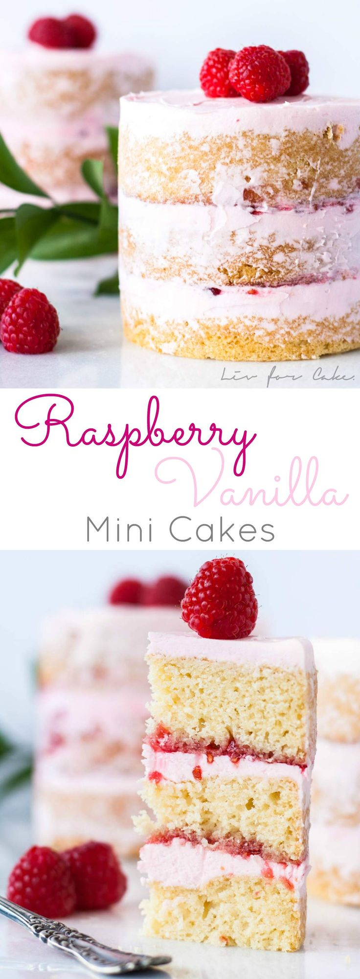 Buttery cake with a creamy vanilla frosting layered with raspberry jam. | livforcake.com