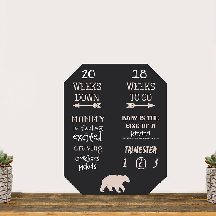 """Pregnancy Countdown Chalkboard """"Baby On The Way Count Down"""""""