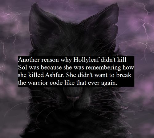 Warriors Into The Wild Plot Summary: 1000+ Images About Warrior Cats On Pinterest