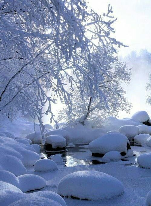 (59) Twitter #winter #country #photography