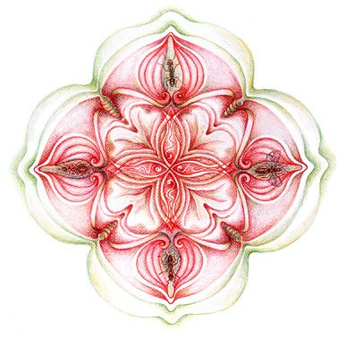 Het eerste - Basis - chakra geeft informatie over ons lichamelijk welzijn, de eerste levenskracht.