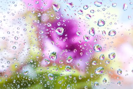 http://listenlearnmusic.com/wp-content/uploads/2012/03/April-Showers-Bring-May-Flowers.jpg