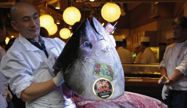 1.8 million dollars for a single tuna! - samedi 5 janvier - ParisMatch.com