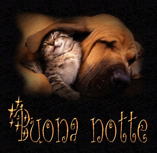 Immagini Dolce notte 23
