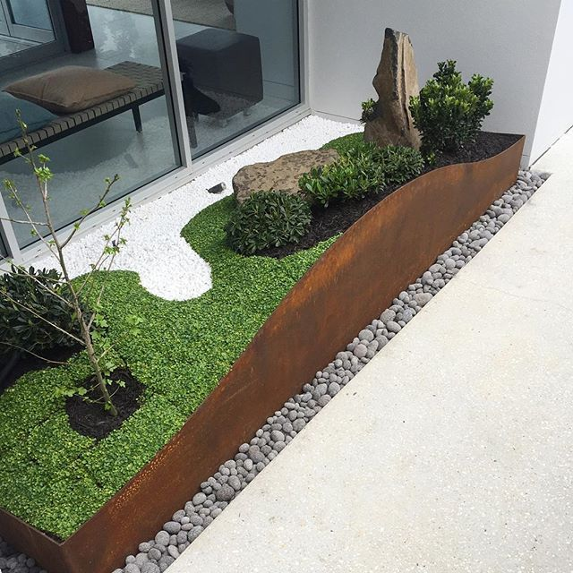 The Japanese inspired garden growing well after install. The Corten curved back contrasts nicely against the green of the dichondra. #thesmallgardenproject #thesmallgarden #connectingpeoplewithnature #bringinglifetoyourspace #urbangarden #landscapedesign