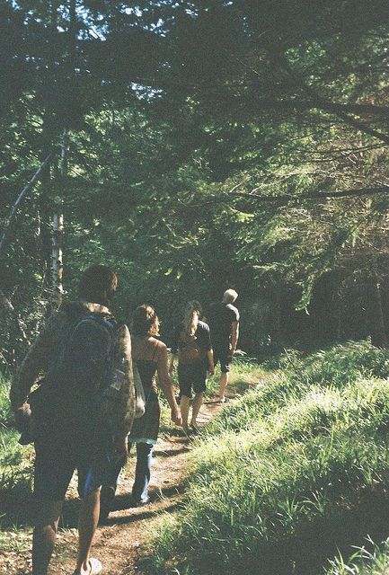 im taking my closest friends and we will wander