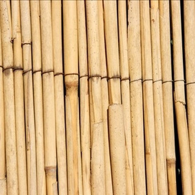 Best 25 Reed Fencing Ideas On Pinterest Inexpensive