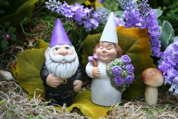 Funny Gnomes: Pinterest • The World's Catalog Of Ideas