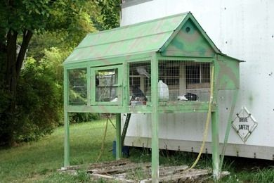 1000 Images About The Pigeon On Pinterest Mansions