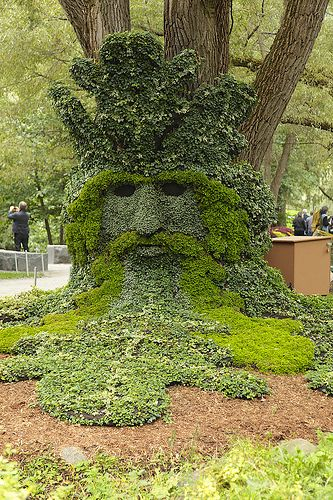 """Druids Trees:  """"Spirits of the #Forest - The #Green #Man."""""""