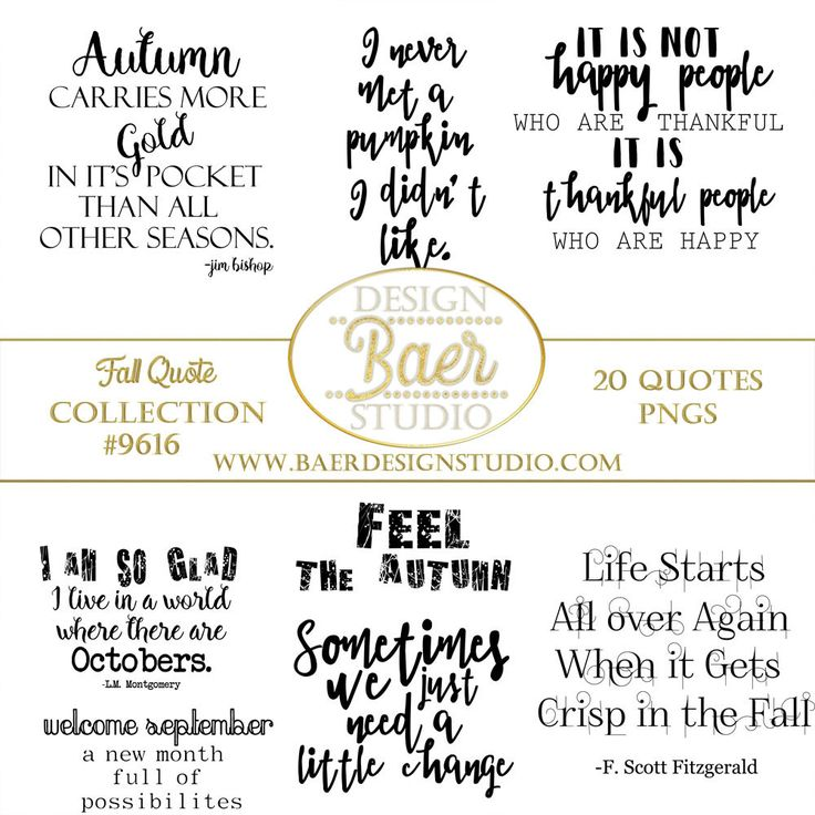 Inspirational Quotes, Fall Quotes, Autumn Quotes, Pumpkin Quotes, September Quotes, October Quotes, Fall Word Art, png Quotes, for designing social media posts, scrapbook layouts, planner clip art, invitations, posters and more.  Instant download