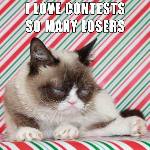 Do u know what has boggled my mind I have found out that grumpy cat is actually a girl wow ...there goes my ego...haha I mean like being a girl myself I understand why they made grumpy cat a girl but yeh those people are mean haha like grumpy cat lol this is all so confusing