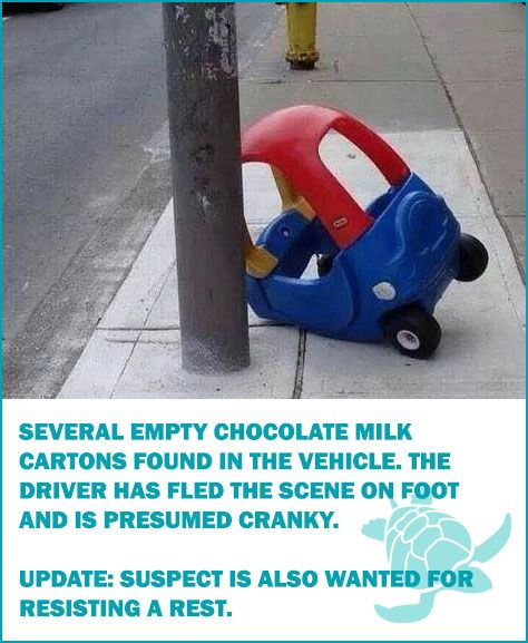 Several empty chocolate milk cartons found in the vehicle. The driver has fled the scene on foot and is presumed cranky.  UPDATE: Suspect is also wanted for resisting a rest. Toddler Humor • Waterfront Properties Blog http://www.wfpblogs.com/category/funny/