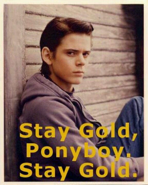 Ponyboy Quotes Beauteous Stay Gold Ponyboy Quote Quotes