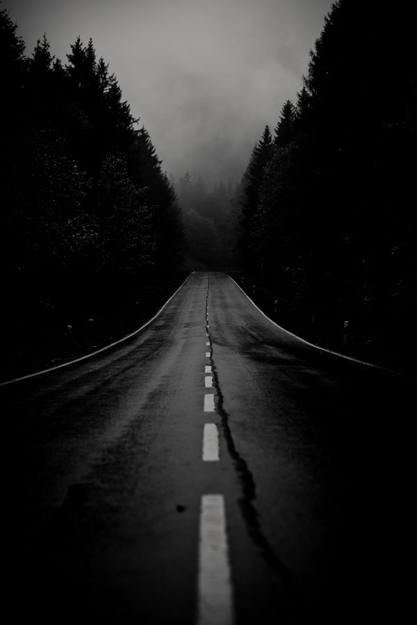 Night Has Fallen The Dark Road Ahead
