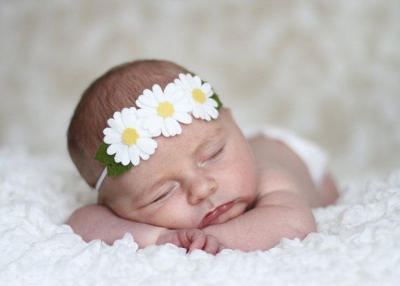 Daisy Headband Triple Daisy Felt Flowers on a White Skinny Elastic Headband All Sizes Newborn through Adult Hippie White Daisies on Etsy, $6.49