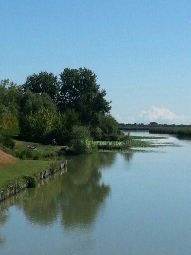 #Argenta #ferrara #Campotto #Vallesanta #oasi