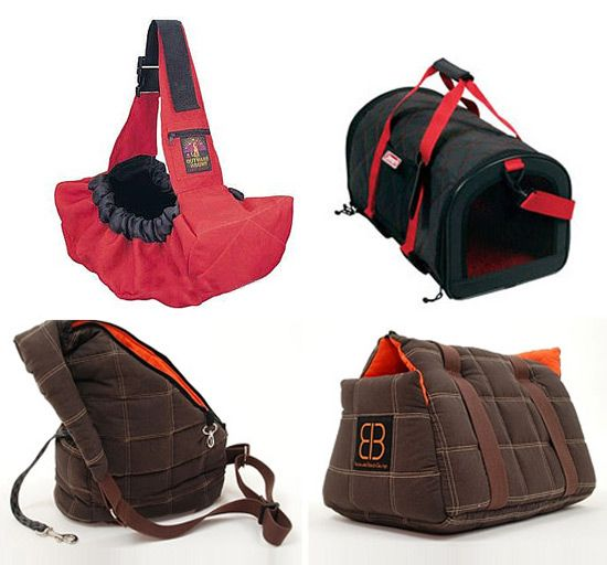 What Kin Dof Backpack Can I Carry My Dog In