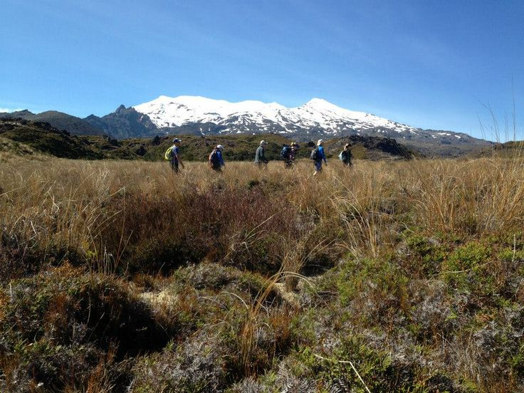 Walking Legends hiking hobbits recreating scenes from the Lord of the Rings #LordoftheRingsscenery http://www.walkinglegends.com/walks/tongariro-hiking-tour/