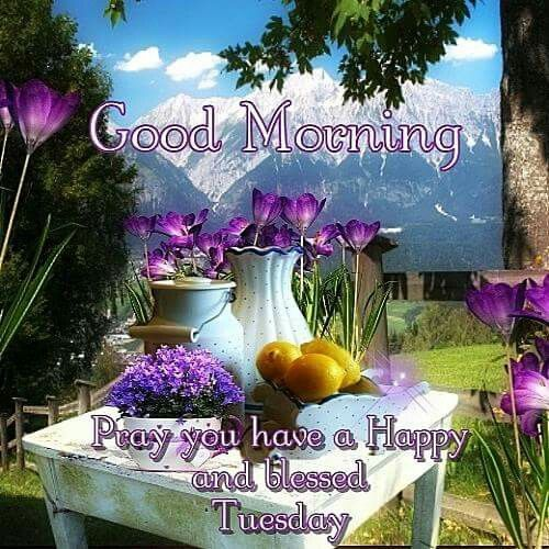 Good Morning, Pray You Have A Happy And Blessed Tuesday good morning tuesday tuesday quotes good morning quotes happy tuesday good morning tuesday quotes happy tuesday morning tuesday morning facebook quotes tuesday image quotes happy tuesday good morning
