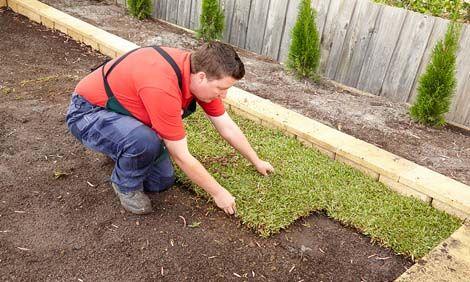 Woman laying the turf