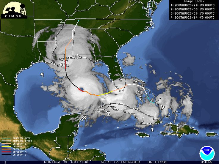 August 29 – Hurricane Katrina makes landfall along the U.S. Gulf Coast causing severe damage. At least 1,836 die in the aftermath.