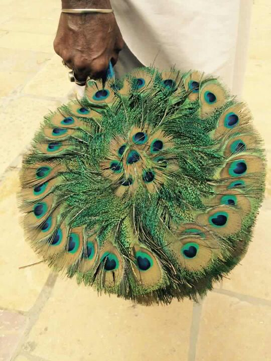 Peacock furs, believed to bring good lucks.