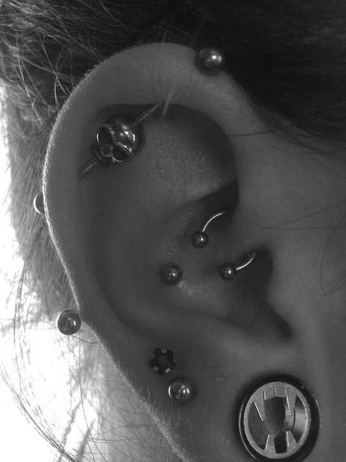 1000 Images About Piercings On Pinterest Plugs Daith