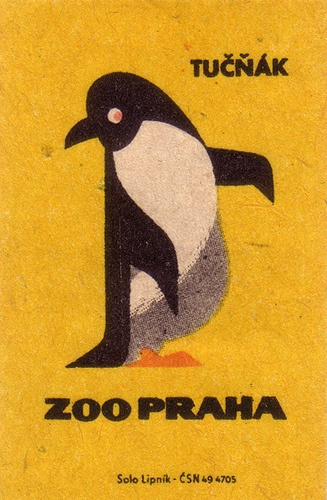 Penguin! ペンギン (jp) Pinguin (de) penguin (en) 펭귄 새 (kr) manchot (fr) pinguino (it) pingvin (se) pinguim (pt)葡 pingüino (es)西 pinguïn (nl)荷